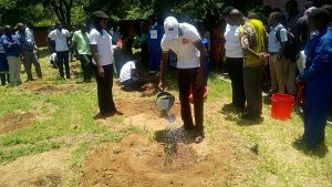 Miracle Technical Institute in Tree Planting Exercise