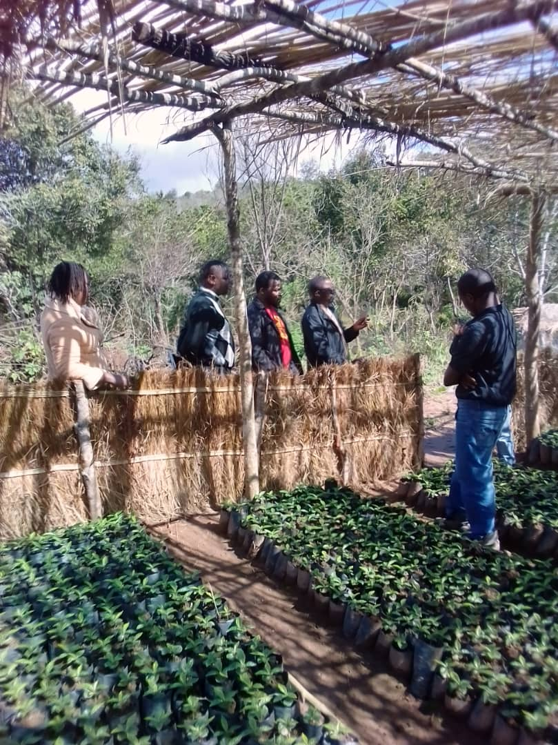 Chipunga Board Members in Farm Inspection Tour
