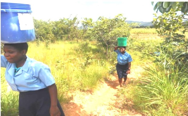 Students fetching water